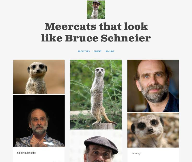 screengrab of meercats that look like bruce schneier