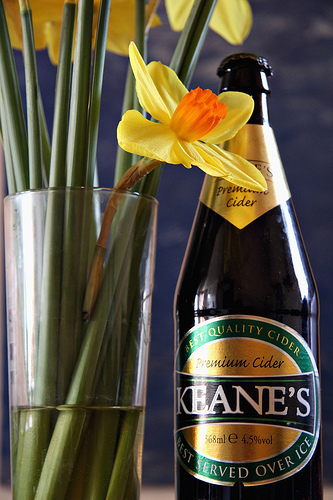 Keane's Premium Cider Bottle with Daffs